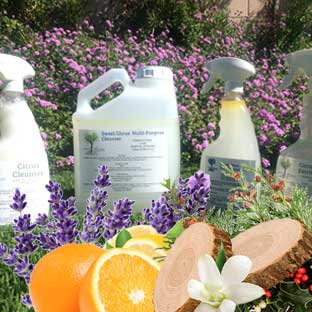 A Natural Cleaning Company products in a natural setting